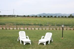 relax in giardino in agriturismo a Marina di Grosseto